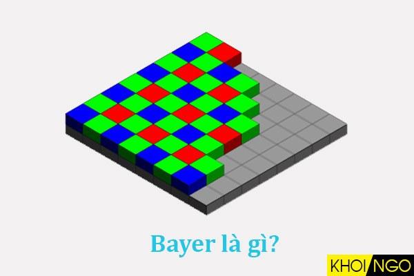 Bayer-la-gi