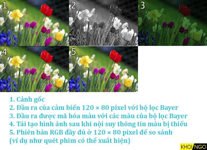 Hinh-anh-mau-sac-RGGB