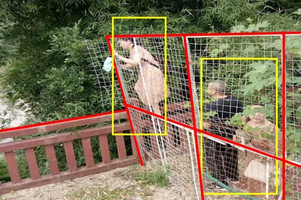 Tính năng hàng rào ảo Tripwire trên camera IVS